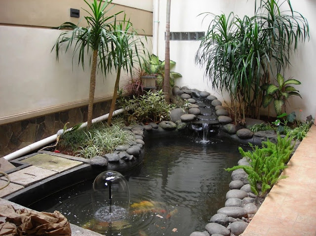 kolam ikan minimalis di depan rumah