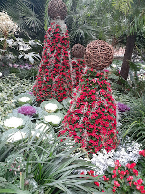 Allan Gardens Conservatory 2019 Winter Flower Show two by garden muses--not another Toronto gardening blog
