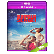Sergio y Sergei (2017) WEB-DL 720p Latino