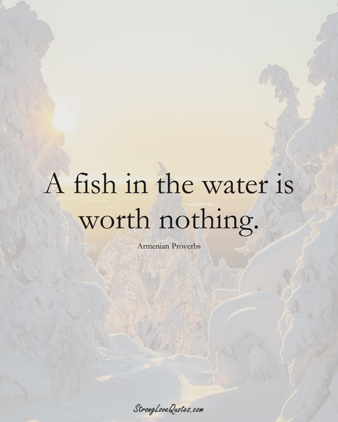A fish in the water is worth nothing. (Armenian Sayings);  #AsianSayings