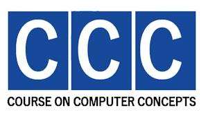 The summary of NIELT CCC Mock Test Exam