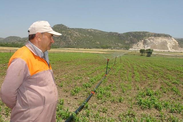 Çiftçilerle ilgili önemli gelişme! Belgeyi almalarına gerek yok!