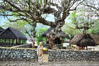 Tenganan Village | Sunia Bali Tour