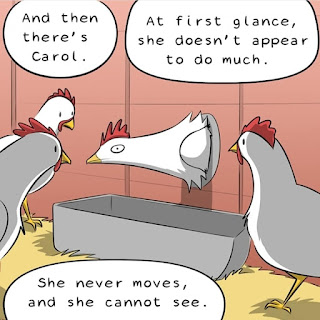 Carol the chicken