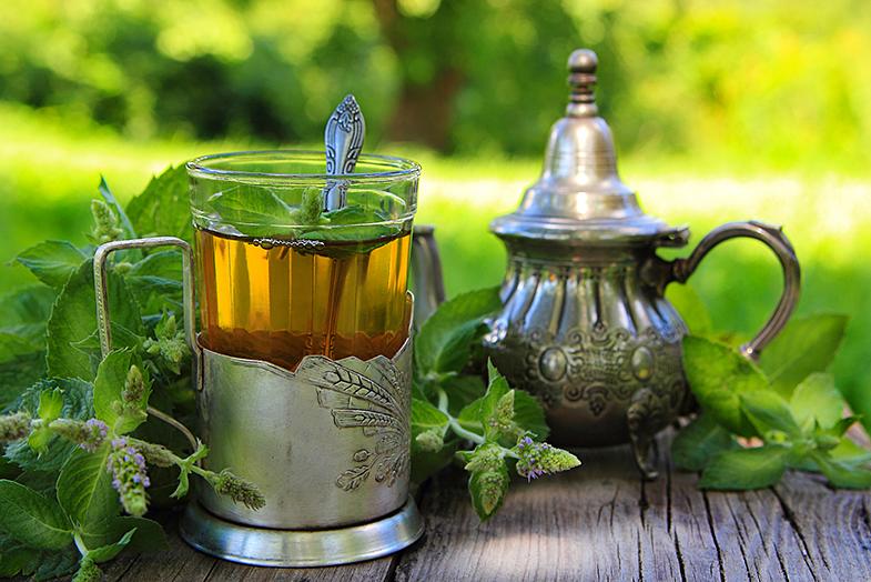 Camellia sinesis o verdadeiro chá