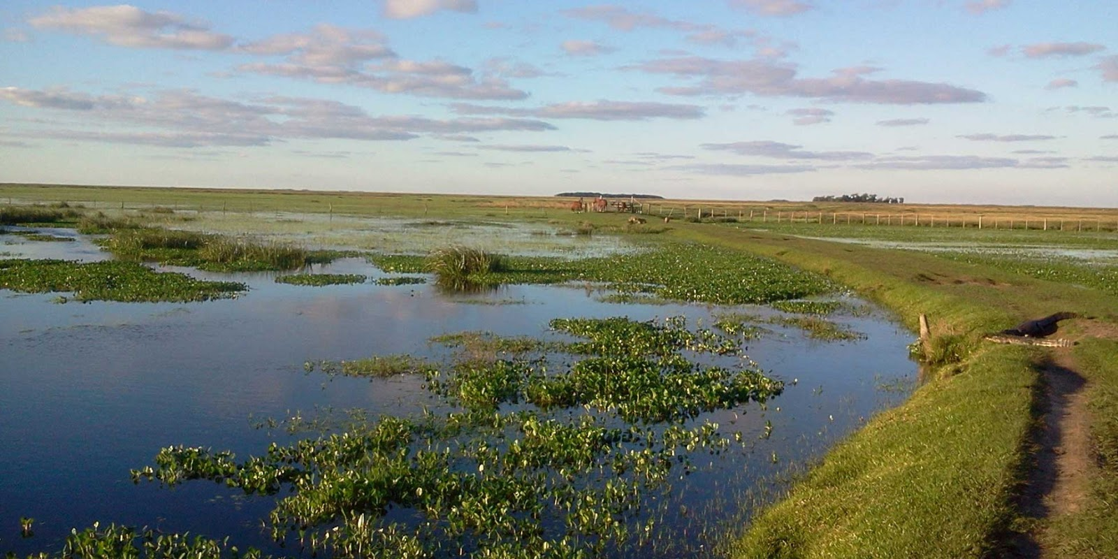 Se creó una nueva reserva en los Esteros del Iberá
