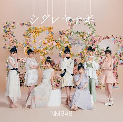 NMB48 - Shidare Yanagi lyrics terjemahan arti lirik kanji romaji indonesia translations シダレヤナギ 歌詞 info lagu single selected members senbatsu