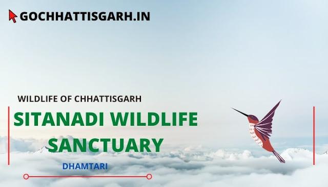 सीतानदी वन्यजीव अभ्यारण्य छत्तीसगढ़ | Sitanadi wildlife sanctuary chhattisgarh