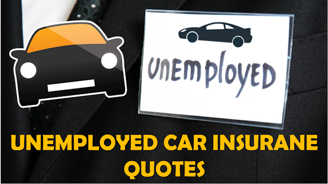 Instant Car Insurance Quote Enchanting Unemployed Car Insurance Auto Insurance Quotes For Unemployed