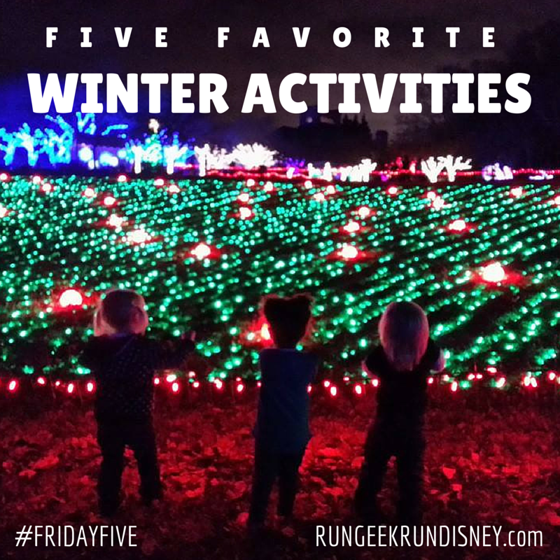 Five Favorite Winter Actvities