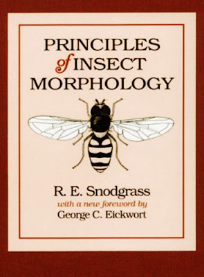 Principles of Insect Morphology First Edition (PDF)
