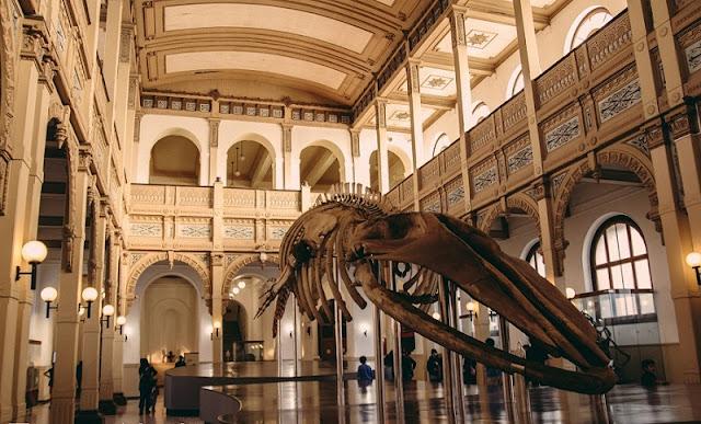 Visitar os museus de santiago no mês de junho