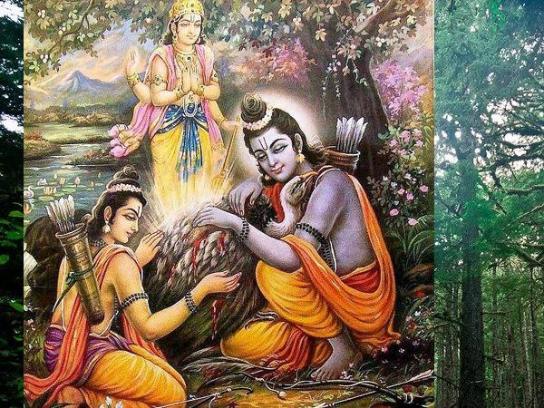 Ramayana Chapter 18-Rama Meets Jatayu
