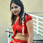Hot South Indian Actress Reshmi in Saree