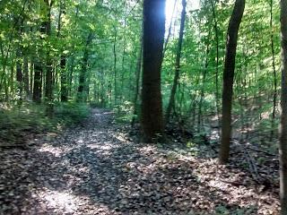 sentier parc-nature du Bois-de-liesse