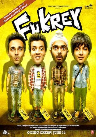 Fukrey 2013 HDRip 350MB Hindi Movie 480p Watch Online Full Movie Download bolly4u