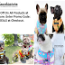 The Best Dog Harness | Frenchiestore