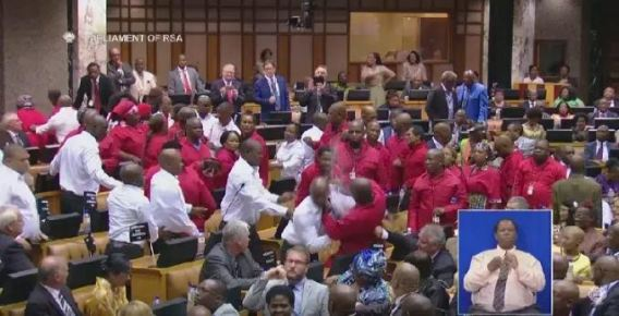 (Video) South African MPs fight in parliament as President Zuma watches