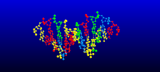 pengertian makromolekul adalah