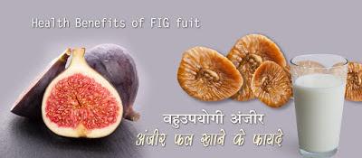 अंजीर खाने के फायदे Anjeer Health Benefits in Hindi