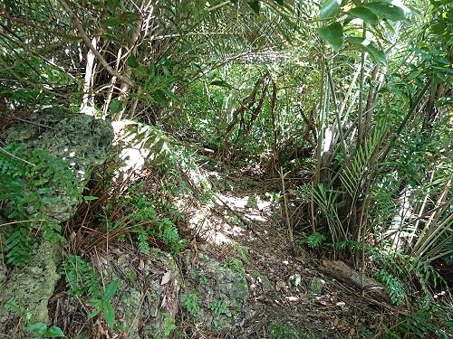 スクブ御嶽拝所の写真