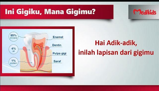 Bentuk gigi manusia