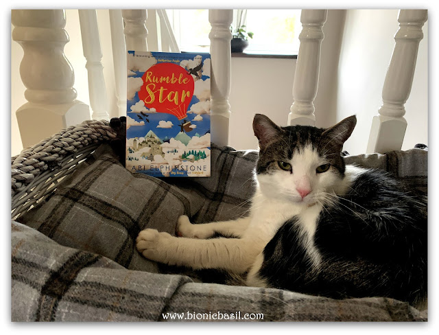 Feline Fiction on Fridays #125 ©BionicBasil® Rumblestar - Melvyn's Purrsonal Copy