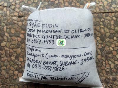 Benih padi yang dibeli   M. SYAEFUDIN Demak, Jateng.  (Setelah packing karung ).