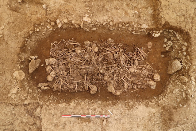 Neolithic mass grave found in central France