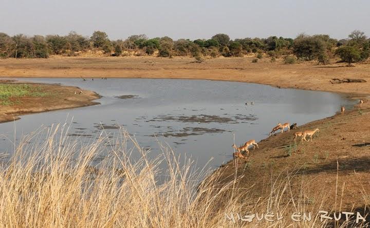 Nsemani Dam, Kruger