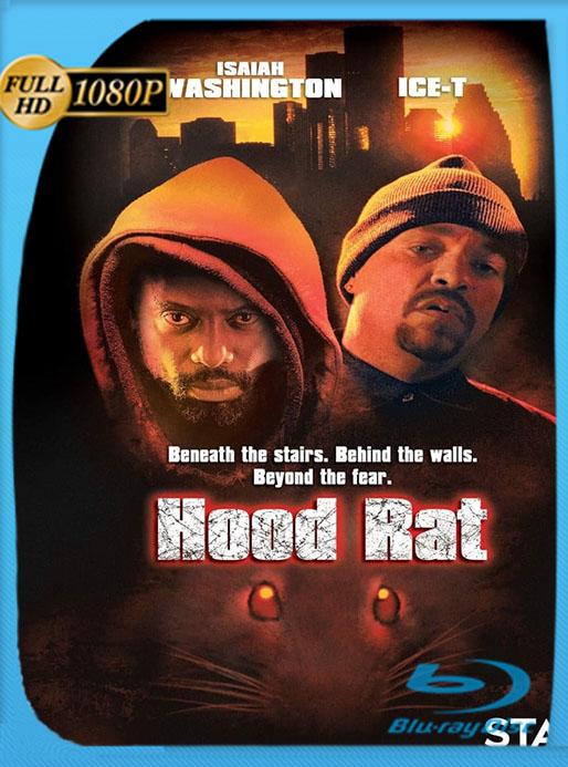 La Venganza de las Ratas 2001 1080p Latino (Hood Rat)  [GoogleDrive] [tomyly]