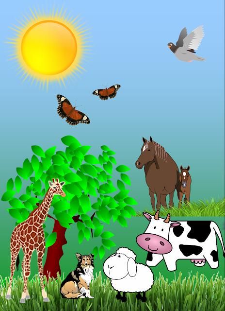 Animale diurne și animale nocturne