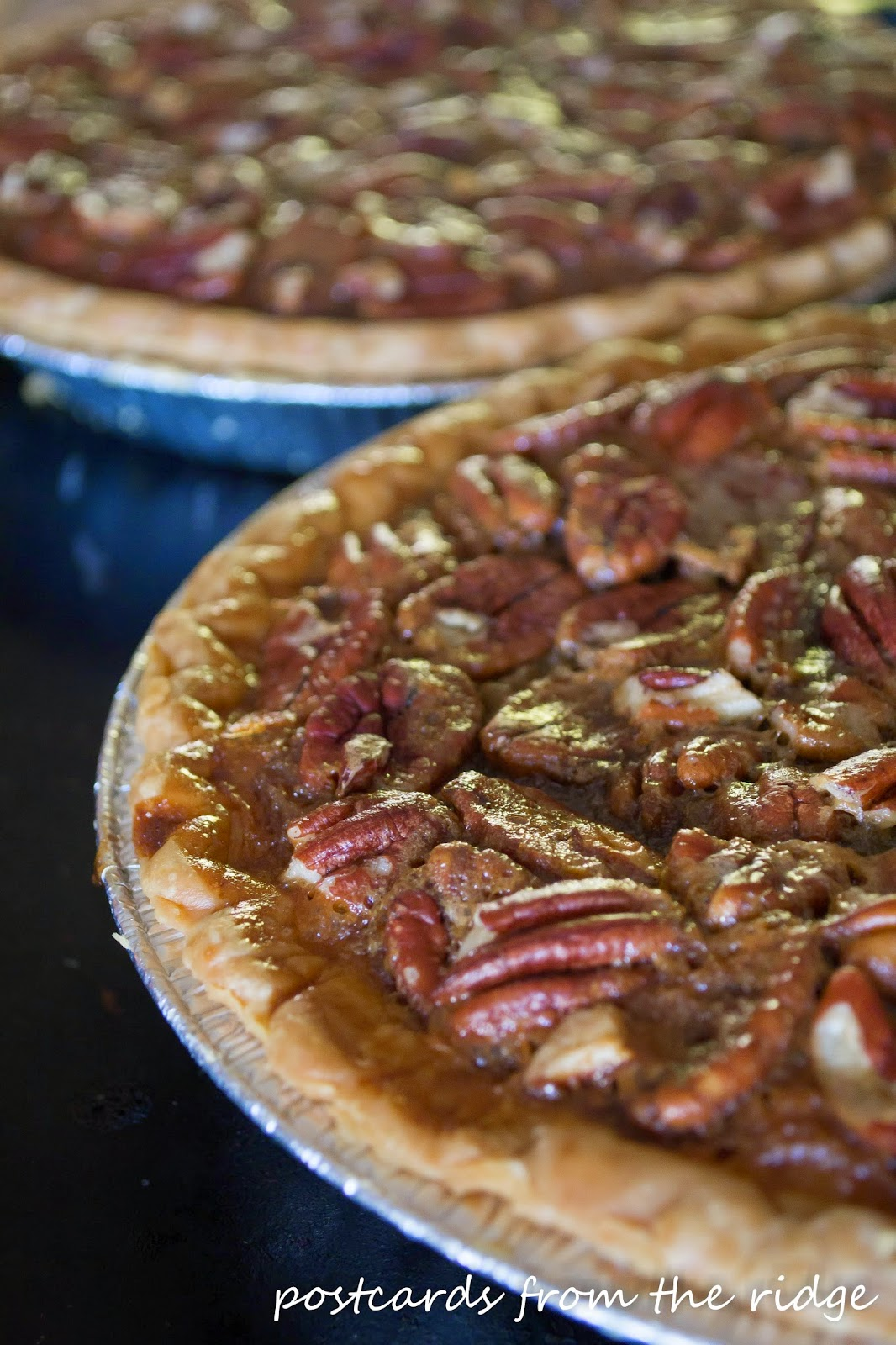 closeup of homemade pecan pies