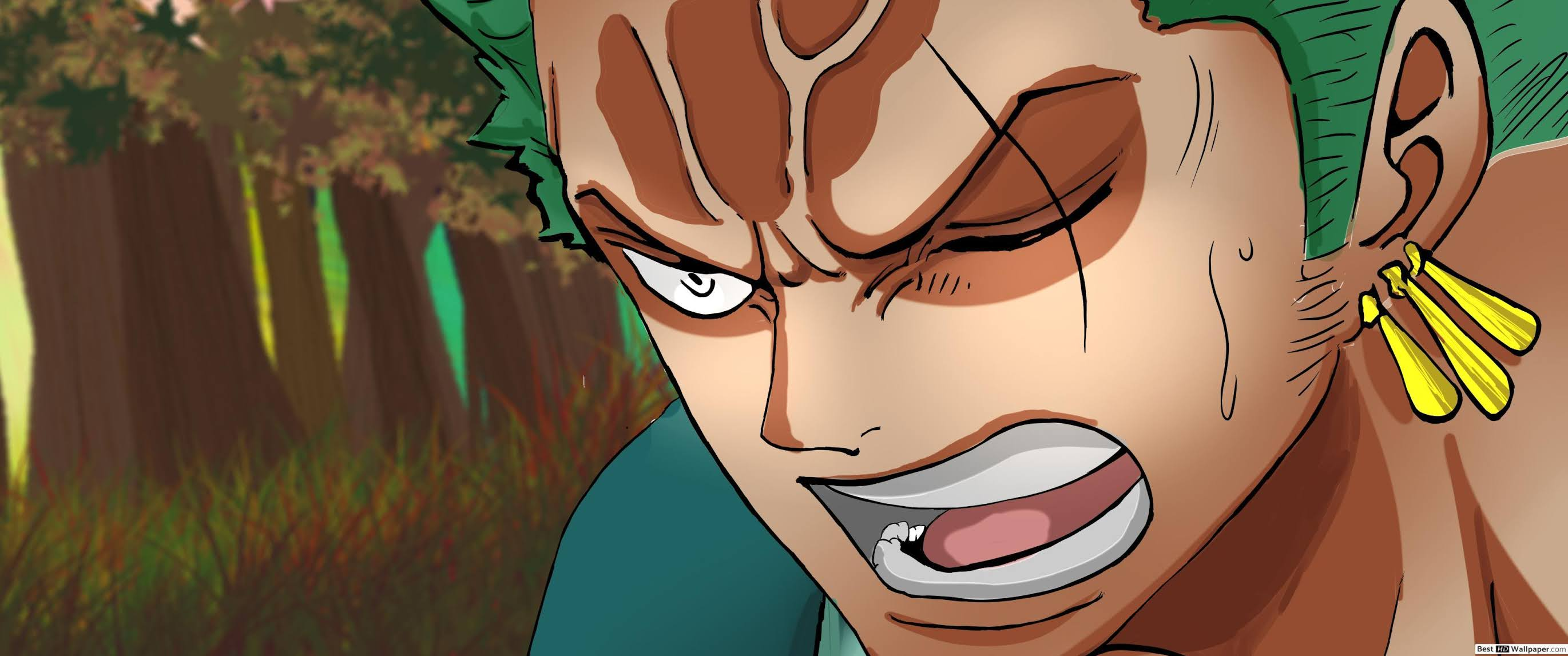 One Piece One Piece Zoro Wallpaper 4k Android Iphone Wano