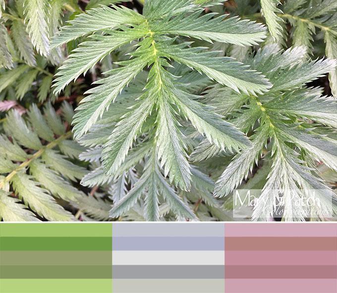 Maryandpatch, Color Vibrations, photo, inspiration, palette