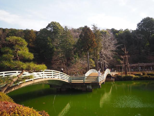 薬師池公園 薬師池の橋