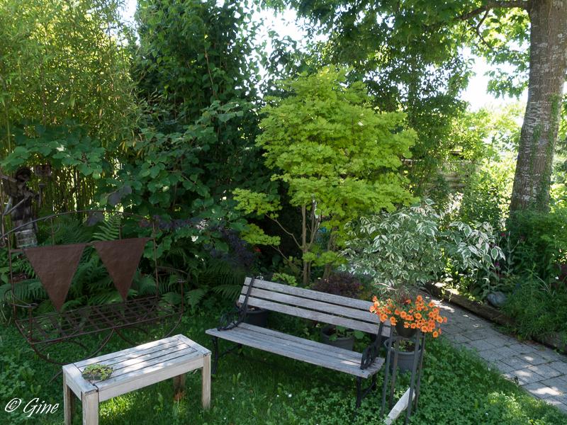 Au jardin de gine un petit tour - Petit jardin plan de la tour tours ...