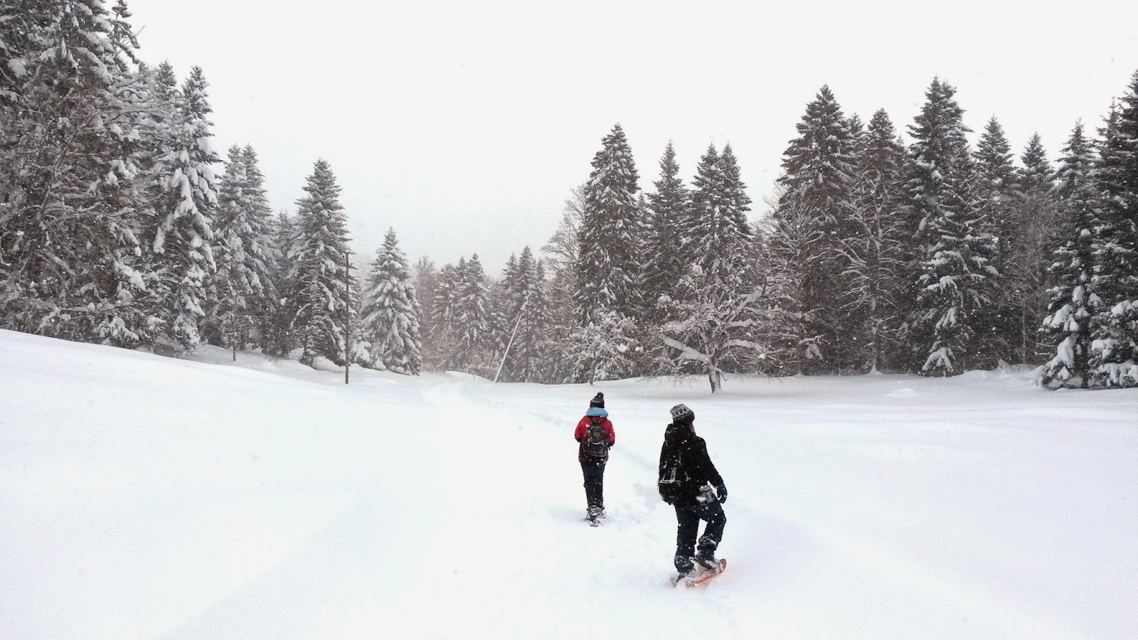 Snowshoeing in St.Cergue