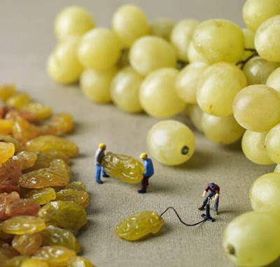 How grapes are made - Slinkachu