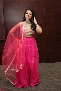 Geethanjali sizzles in Pink at Mixture Potlam Movie Audio Launch 028.JPG