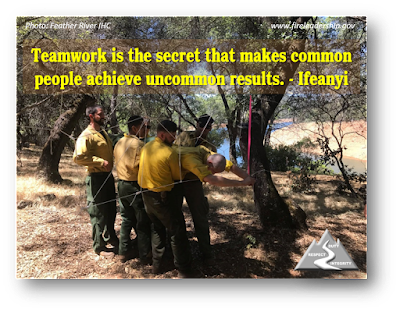 Teamwork is the secret that makes common people achieve uncommon results. - Ifeanyi