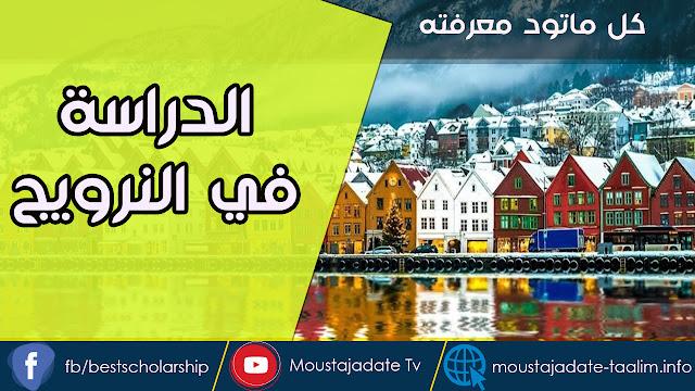 تريد الدراسة في النرويج | هدا الدليل النهائي للدراسة في النرويج للطلاب الأجانب