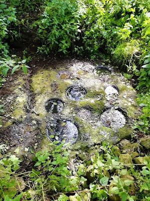 Ninehole Stone, Offaly