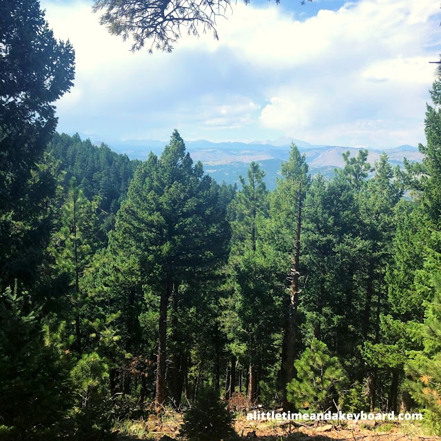 A lofty evergreen forest could not entirely obstruct our view of mountains in the distance.