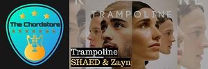SHAED - TRAMPOLINE Guitar Chords (Zayn Malik)