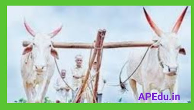 AP Farmers Useful Links Some important links related to Andhra Pradesh farmers