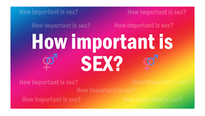 https://www.gafcon.org/blog/how-important-is-sex?utm_source=GAFCON+Communications&utm_campaign=d46a8b0dca-EMAIL_CAMPAIGN_2018_01_10&utm_medium=email&utm_term=0_ae55802e3e-d46a8b0dca-90184517