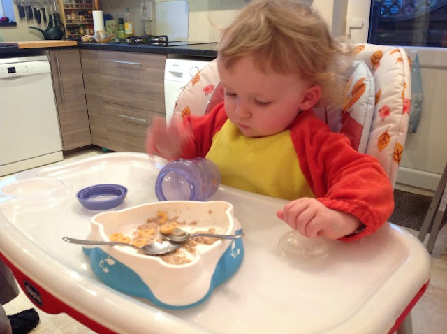 toddler in highchair eating breakfast