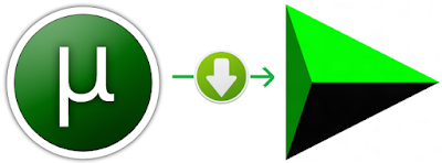 Download Torrent With IDM