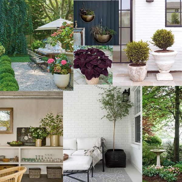 Relaxed modern traditional patio mood board